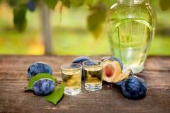 Slivovitsa plum brandy in shot glasses Stock Images