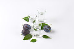 Slivovitz and plums Stock Images