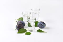 Slivovitz and plums Stock Photography