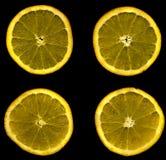 Slixes oranges Images libres de droits