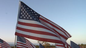 Slo Mo of American Flags stock video footage