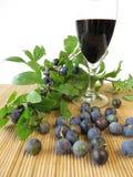 Sloe κρασί φρούτων στοκ φωτογραφίες