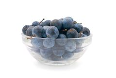 Sloe Berries. In a vase on an isolated white background Stock Photos