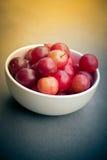 Sloe berries Stock Images