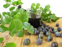 Sloe fruits liquor. And fresh fruits Royalty Free Stock Photo