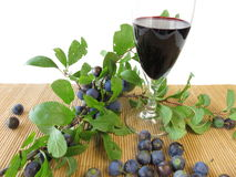 Sloe fruits wine stock photo