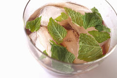 Sloe Gin Cocktail with Mint Leaves Royalty Free Stock Images