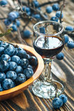 Sloe gin. Glass of blackthorn homemade light sweet reddish-brown liquid. Sloe-flavoured liqueur or wine decorated with fresh juicy ripe prunus spinosa berries royalty free stock photography
