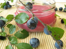 Sloe jam Royalty Free Stock Photo