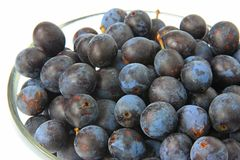 Sloes - Fruits of blackthorn Royalty Free Stock Photography