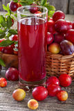 Sloes and plums with juice Royalty Free Stock Image