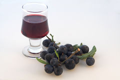 Sloes & sloe gin Stock Photos