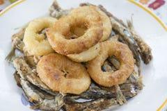 Slog och stekte cirklar av tioarmade bläckfisken Royaltyfria Foton