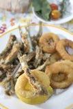 Slog och stekte cirklar av tioarmade bläckfisken och ansjovisar Royaltyfri Foto