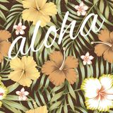 Slogan aloha tropical leaves hibiscus brown background. Seamless composition of tropical leaves, flowers of hibiscus and frangipani in a retro style on a brown Royalty Free Stock Photo