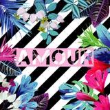 Slogan di tresca Stampa a strisce floreale esotica tropicale Immagini Stock