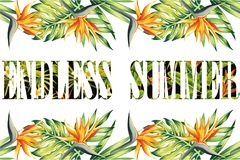 Slogan endless summer jungle frame. Slogan endless summer lettering jungle bird of paradise frame T-shirt fashion print royalty free illustration