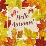 Slogan hello autumn leaves rowan acorn. Vector slogan hello autumn of rowan acorn and red yellow leaves of oak, maple, birch. Seamless pattern nature background vector illustration
