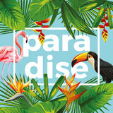 Slogan paradise toucan flamingo tropical leaves blue background Stock Photos