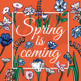 Slogan spring is coming with wildflowers orange background Royalty Free Stock Image
