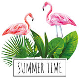 Slogan summer time tropical leaves flamingo white background. Slogan summer time tropical green leaves and pink flamingo bird on a white background. Trendy Stock Photography
