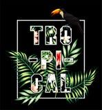 Slogan tropicale Tucano e stampa delle foglie di palma Fotografia Stock Libera da Diritti