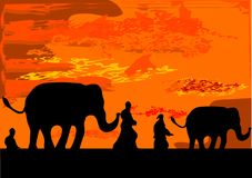 Slonovi. Elephant caravan front orange sky  illustration Royalty Free Stock Photos