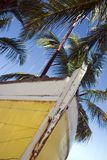 Sloop. A yellow-hulled sloop sits on a tropical beach royalty free stock photo