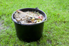 Slop-pail. Black slop-pail with fish bones and other garbage royalty free stock photos