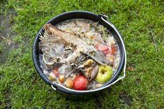 Slop-pail on the grass. Black slop-pail on the grass with colorful natural garbage stock photography