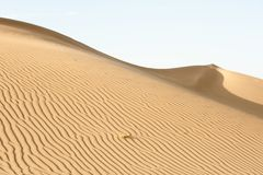 Slope of the dune Royalty Free Stock Image