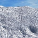 Slope for freeride with traces from skis and snowboards. Snowy off-piste slope for freeride with traces from skis and snowboards at sun winter morning. Caucasus Stock Photos