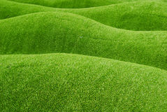 Slope of green grass Stock Images