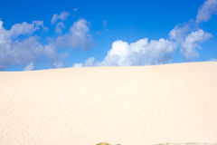 Slope hill sand on yellow dunes on blue sky background. Sustainable ecosystem. Canary island, Fuerteventura Stock Photography