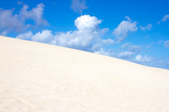 Slope hill sand on yellow dunes on blue sky background. Sustainable ecosystem. Canary island, Fuerteventura Stock Images