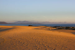 Slope hill sand on yellow dunes on blue sky background. Sustainable ecosystem. Spain, Canary islands, Fuerteventura Royalty Free Stock Images