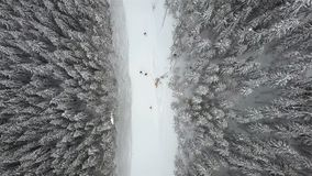 Slope for lowering skiers and snowboarders in the ski resort, top view stock footage