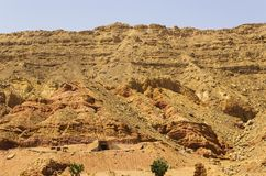 Slope of the mountain. In the Sinai Peninsula Royalty Free Stock Images