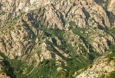 Slope of a mountain. In Chimgan, Uzbekistan Royalty Free Stock Image
