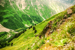 Slope Mountain and views of beautiful green valley Stock Image