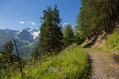 Slope of the mountains of the Elbrus region Royalty Free Stock Photo