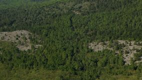 Slope with poor vegetation and panorama of hillsides covered by forest, sequence. Stock footage stock video