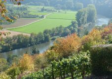 Fields and meadows in the river valley and vineyard opposite. Slope with trees and bushes with colorful autumn leaves on the river valley, view of a river valley stock photography