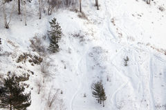 Slope in the winter forest royalty free stock images