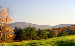 Sloped mountain field. Late autumn meadow in the catskill mountains Royalty Free Stock Photography