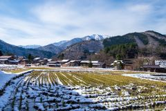 The sloped-roof and thatched-roof houses of snow cover and rice field that started to melt at Shirakawa-go. Japan stock photos