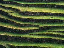 Slopes. Typical agricultural slopes in harsh terrain areas stock image