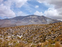 Slopes around volcano isluga at chilean altiplano Royalty Free Stock Photos