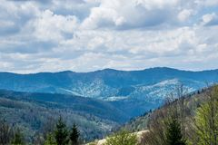 Slopes of Carpathian Mountains. In Ukraine. Natural landscape with awaking colors of forests stock photo