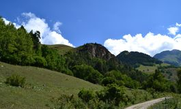 On the slopes of the Caucasus. On the mountain expanses. Photo taken on: July 27 Saturday, 2013 Royalty Free Stock Photography